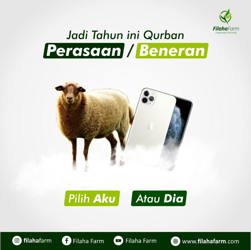 Jual KambinG Qurban Bekasi