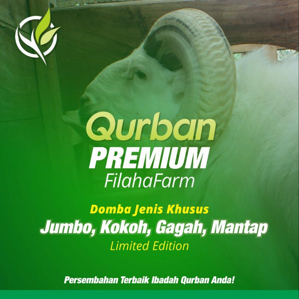 Jual Kambing Qurban Depok 2020