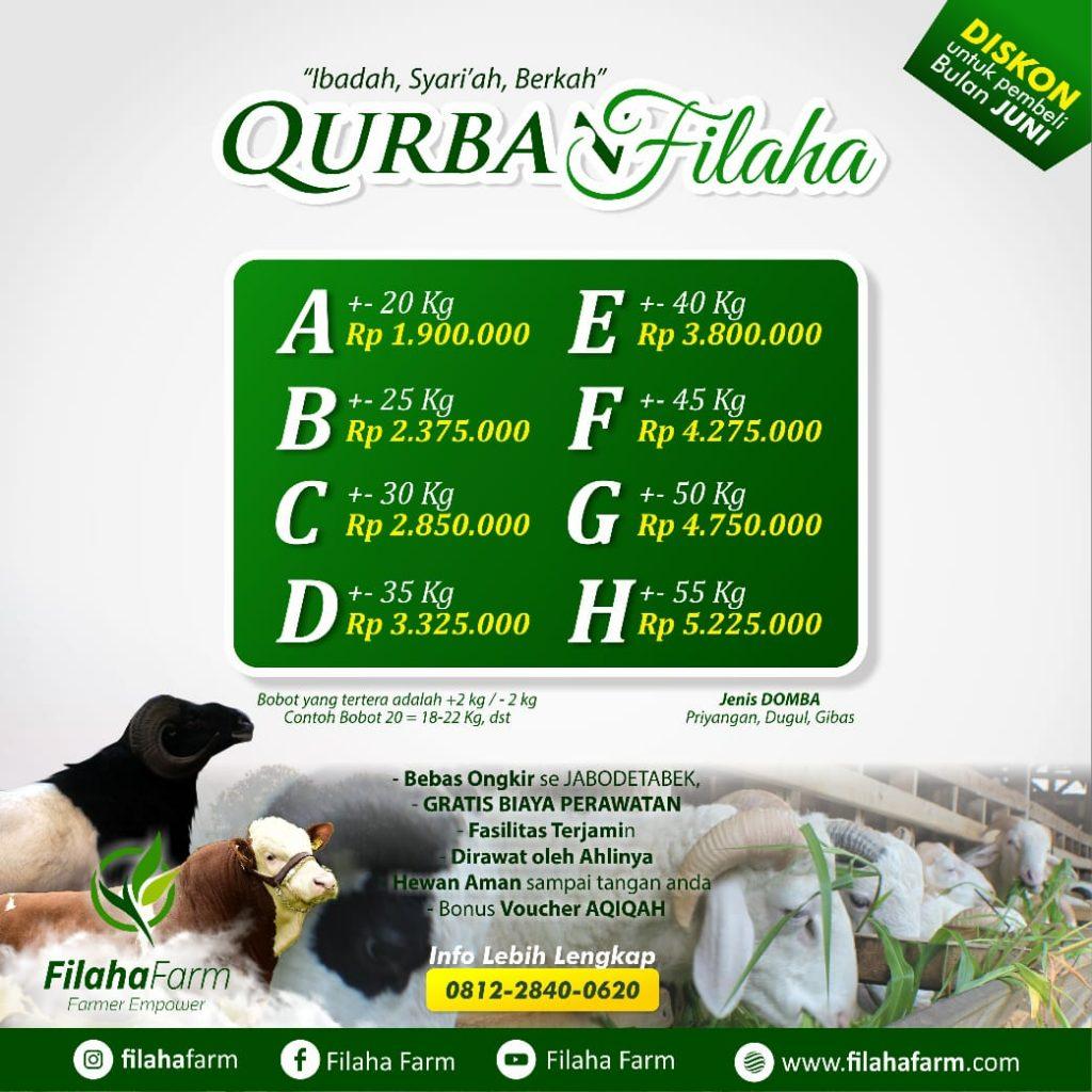 Jual Kambing Qurban Tangerang